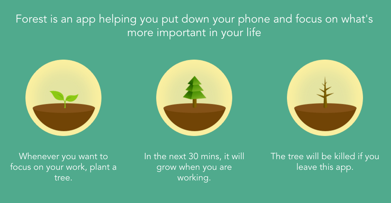 Forest: stay focusd es una app para ser más productivos